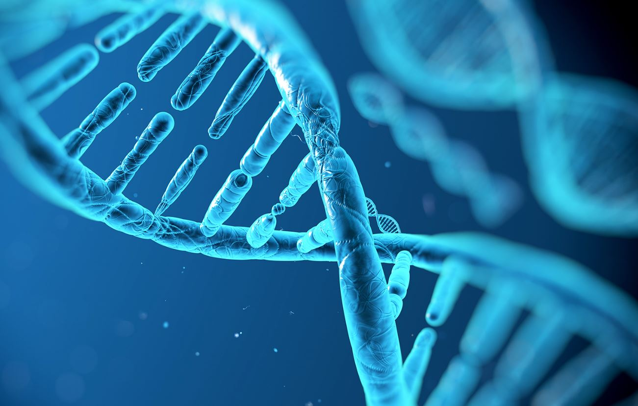 Biotech Stocks - DNA Helix