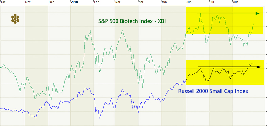 GraycellAdvisors.com ~ Small Cap Stocks Vs Biotech Stocks performance