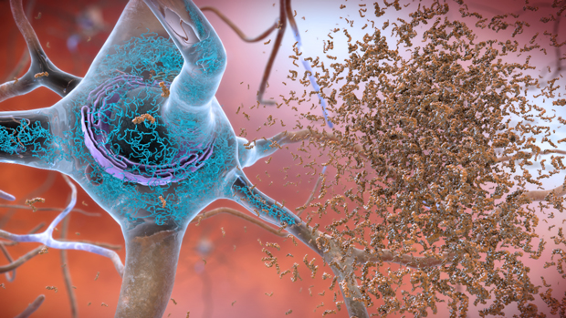 Prudentbiotech.com ~ Cell is the basic of life