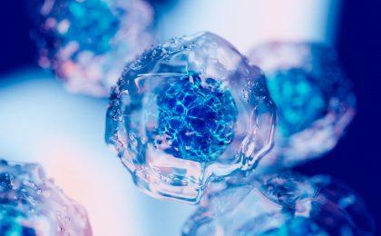 Prudentbiotech.com ~ Crystal