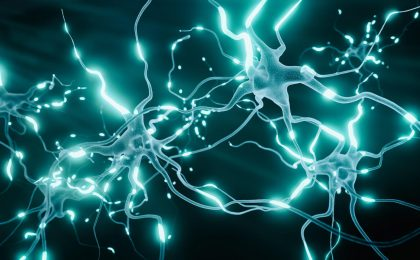 Prudent Biotech - Neurons ~ Getty Images